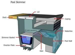 Dallas pool and spa inspection Pool Skimmer